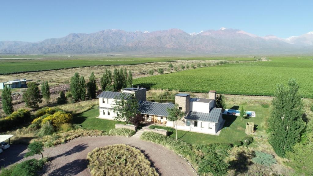 lodge-gran-vineyard-estates-argentina-uco-valley-vines