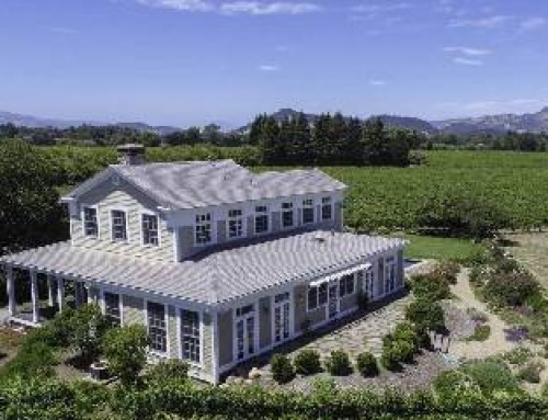 Finding the Dream Vineyard Home: Argentina vs. Napa