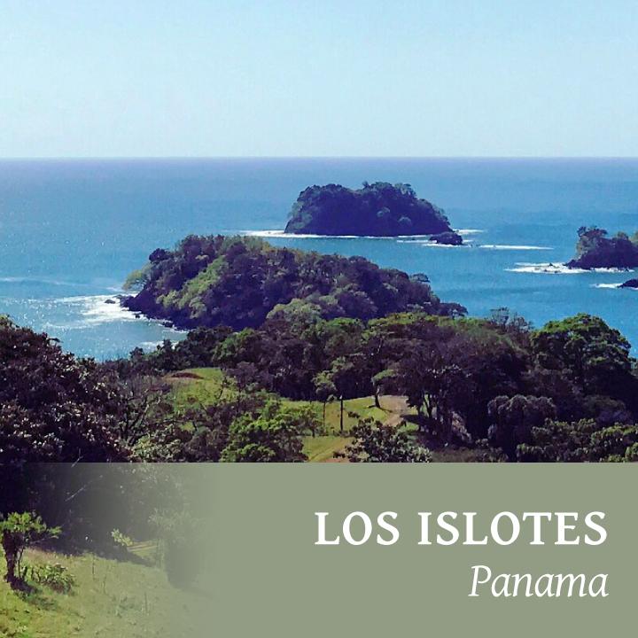 Islotes