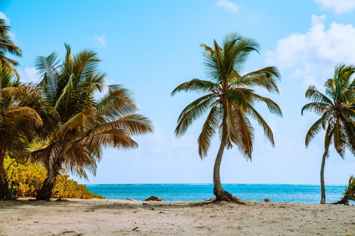 Ambergris coast is a reason to invest in branded hotel residences in Belize.